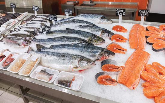 лосось ГМО 4.jpg