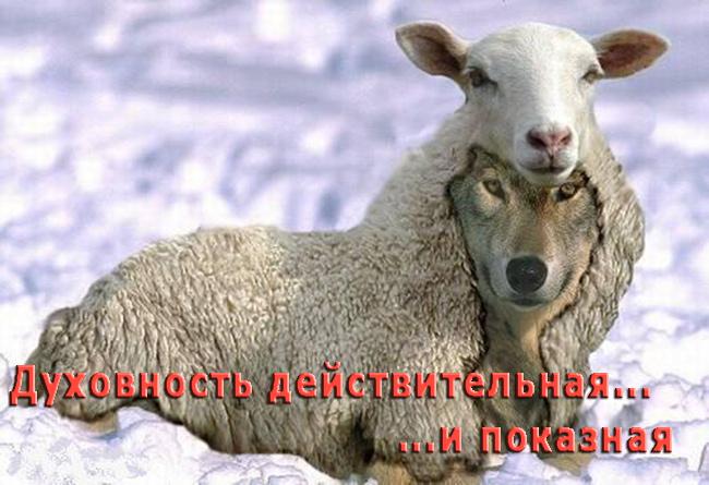 pokaznaya_duhovnost-1.jpg